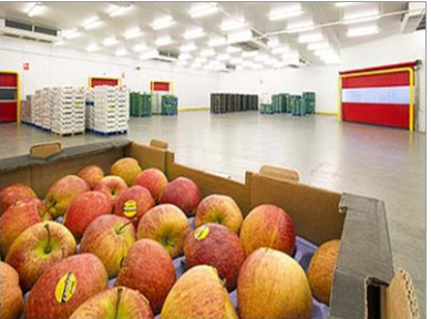 Fruit and Vegetable   Refrigeration